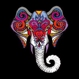 Auspicious Elephant Head Multicolor Digital Print Vinyl Iron On Transfer