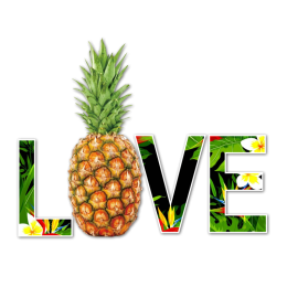 Pineapple Love Heat Transfer Vinyl