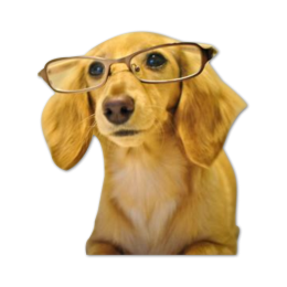 Cute Curious Dog Digital Transferred Vinyl