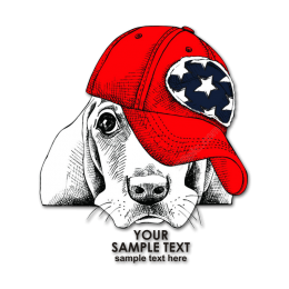 Quietly Lying Dog in Red Hat Heat Transfer Vinyl