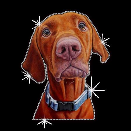 Vizsla Hunting Dog Transfer Vinyl