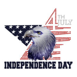 Independence Day Eagle Pattern Heat Transfer