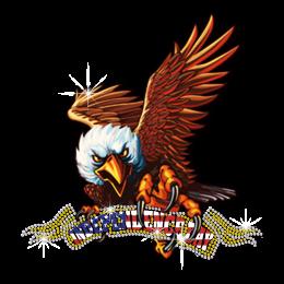 Independence Day Eagle Design Heat Transfer Design
