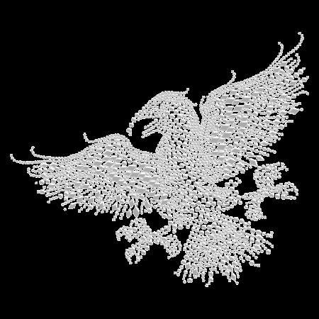 Hotfix Crystal Hawk Rhinestone Motif