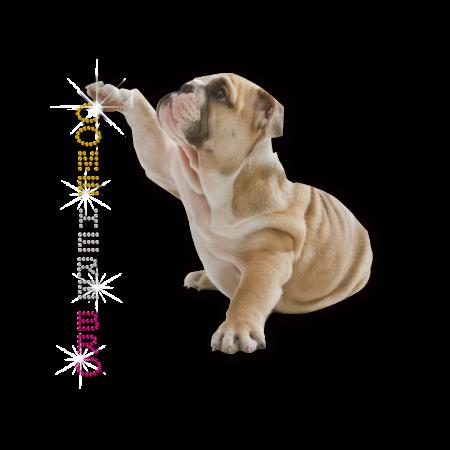 Stock Bulldog Lifts Paw Hotfix Nailhead Transfer