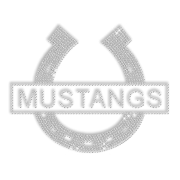 Shining Rhinestone Iron on Mustangs Horseshoe Motif for Shirts