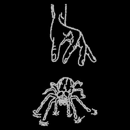 Clear Rhinestone Spider Hot-fix Design