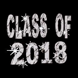 Glitter Letter Class of 2018 Vinyl Transfer