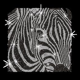 Crystal Zebra Hot-fix Diamante Iron on Motif