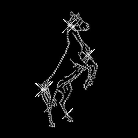 Rhinestone Horse Iron on for T Shirt