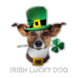 ISS Reflective Irish Lucky Dog Rhinestone Design