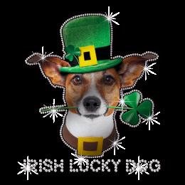 ISS Reflective Irish Lucky Dog Rhinestone Design