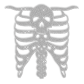 Crystal Rhinestone Skeleton Skull Iron on Motif