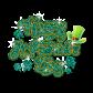 Glitter Happy Saint Patricks Day Rhinestone Transfer