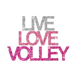 Pink Live Love Volleyball Iron on Glitter Transfer