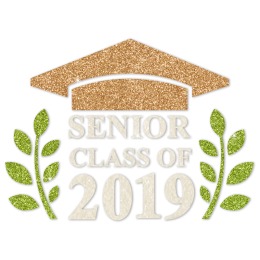 Senior Class Of 2019 Sparkle Glitter Transfer