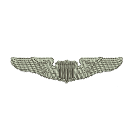 Air Force Wings Embroidery For Beginners Cool Patches
