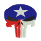 Patriotic Punisher Skull Canvas Embroidery