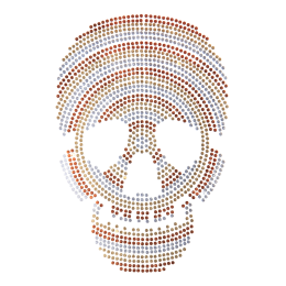 Custom Cool Metallic Skull Patch