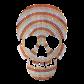 Custom Cool Metallic Skull Patch