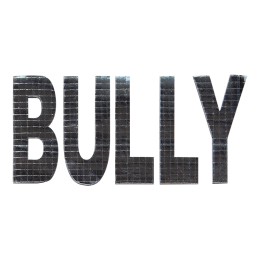 Special Metallic Bully Letter Themed Patch