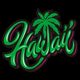 Summer Time Coconut Tree in Hawaii Green Heat Transfer